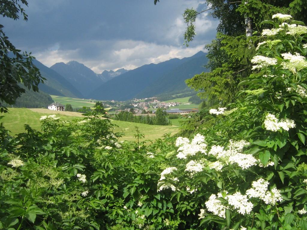 Hai visto? Che cosa vedere in Val Pusteria?