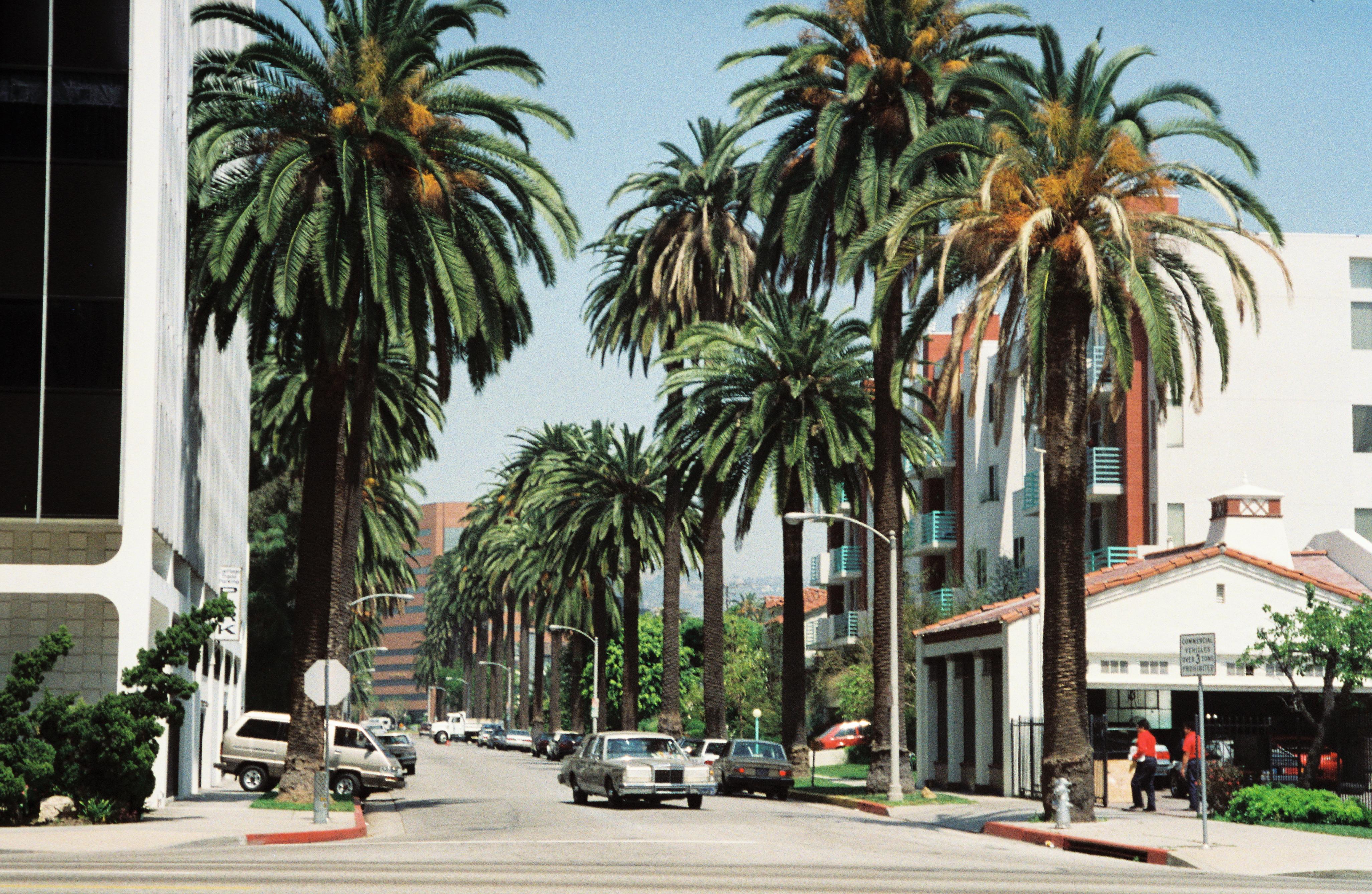 I Migliori Posti Dove Alloggiare A Los Angeles