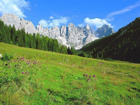Hai visto? Alpe di Pampeago