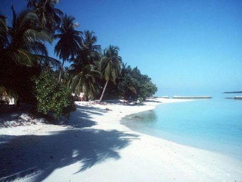 Hai visto? Avete mai sentito parlare di Maldive Alternative?