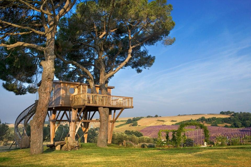 La casa sull 39 albero a viterbo - Casa sull albero minecraft ...