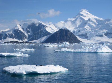 Hai visto? E' possibile fare una crociera al Polo Nord?