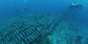 Hai visto? Il muro di Bimini e il mistero della città sommersa di Atlantide