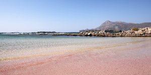Hai visto? Dove visitare le spiagge rosa più belle al mondo