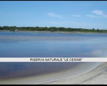 Riserva Naturale Le Cesine