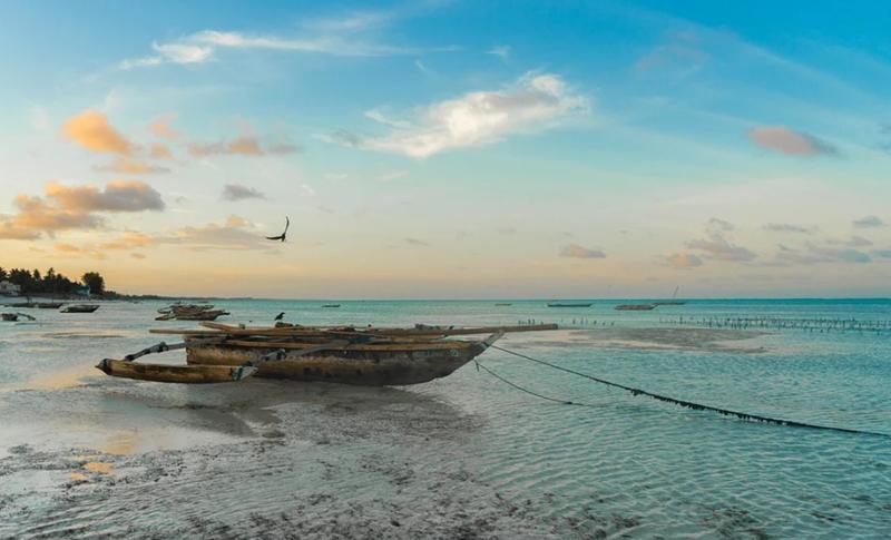 Hai visto? Le migliori mete per un viaggio in Tanzania